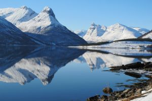 Spiegelbild im Fjord